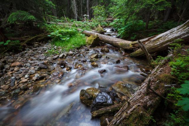 cedar creek - Chris Balboni