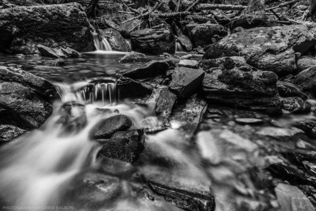 little north fork creek - Chris Balboni