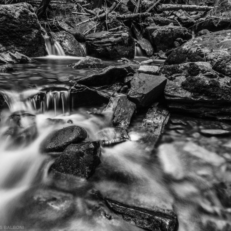 Little North Fork Creek