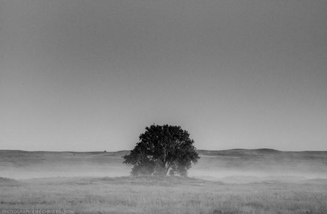 lone tree plains - Chris Balboni